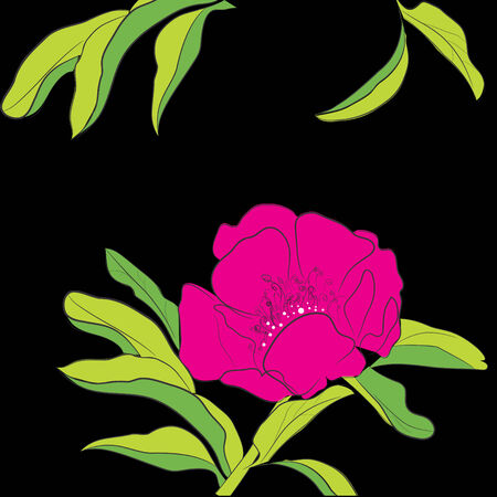 dogrose: Decorative background with Dogrose flowers