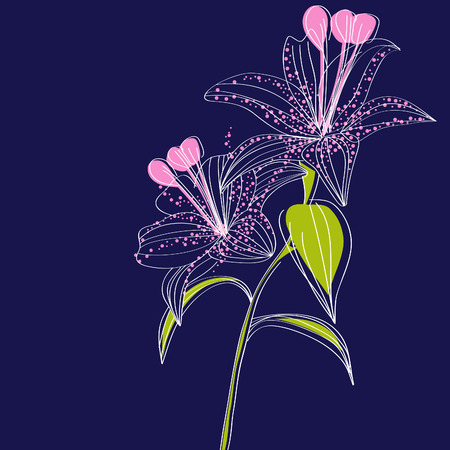 iris flower: Dark blue background with lily flowers