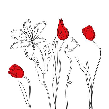 Arrière-plan blanc décoratif avec des tulipes et Lys