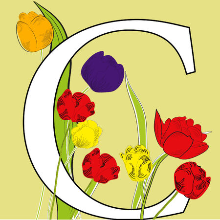 Letter C with tulips Stock Vector - 6065665