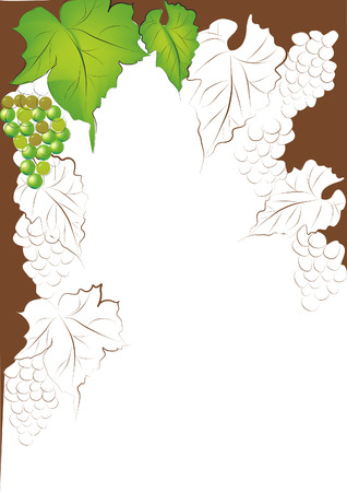 Background with grapevine Stock Vector - 6182895