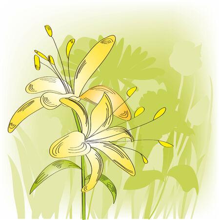 Lily sur fond vert lumineux avec les silhouettes de fleurs