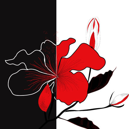 Contrast illustration with flower Vector
