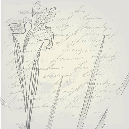 retro stylized background with Iris flower Vector
