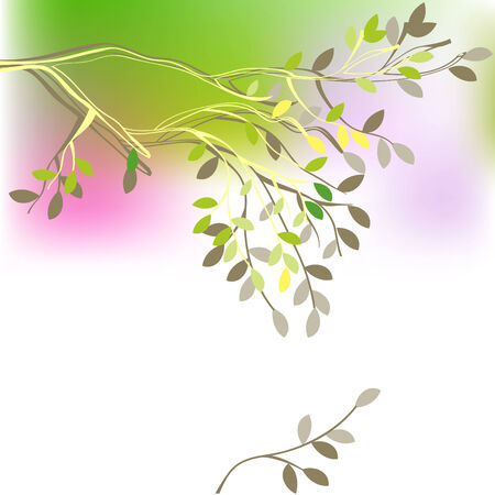 Background with spring branch Stock Vector - 6381788