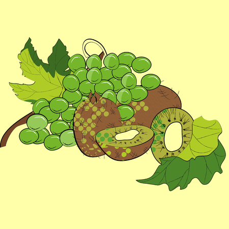 Grapes and kiwi Vector