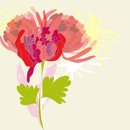 Background with pion flower Illustration