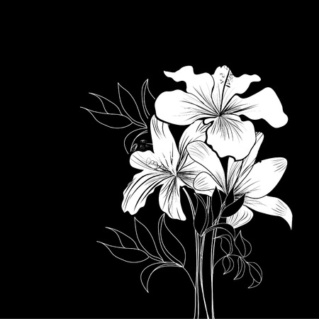 hibiscus: Black and white background with white flowers