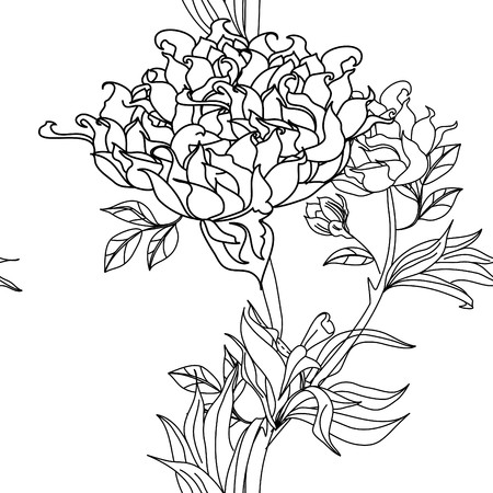 paeonia: Monochrome seamless wallpaper