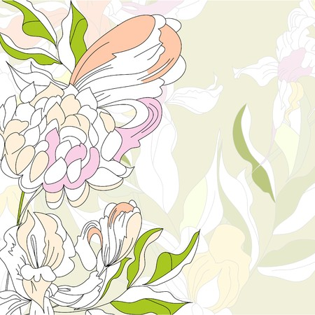 paeony: Floral background