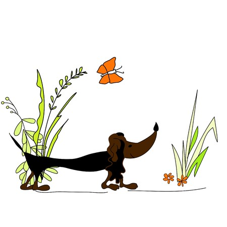 lap dog: Dachshund Illustration