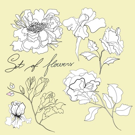 nouveau: Set of flowers Illustration