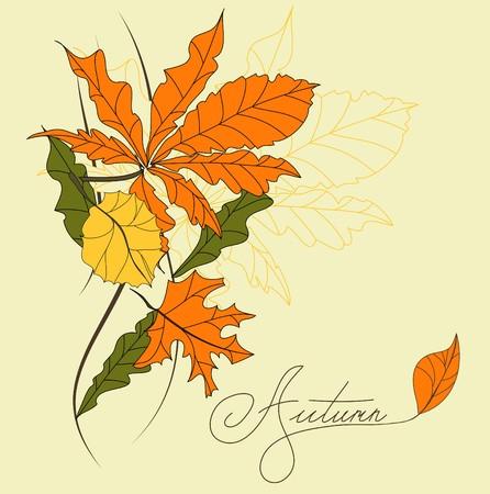 alder: Decorative card  Illustration