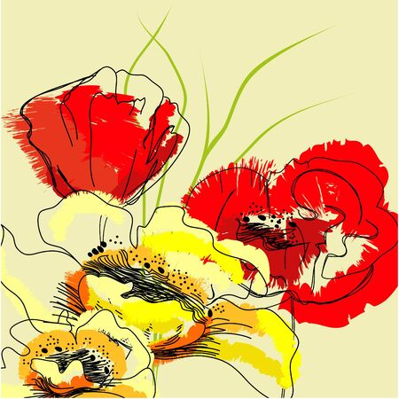 poppy flowers: Colorful background with flowers