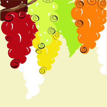 Background with stylized grape Vector