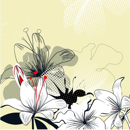 Background with white lily flowers Vector