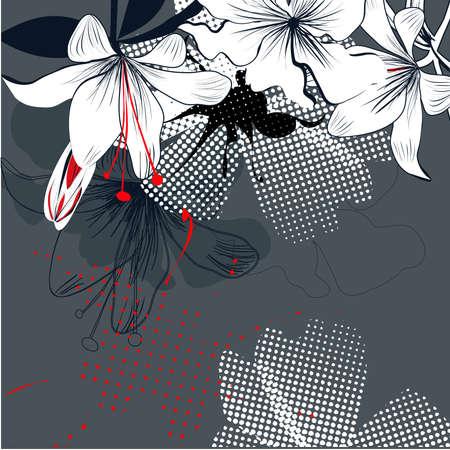lily flowers: Fondo con flores de lirio blanco  Vectores