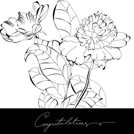 congratulation card: Congratulation card Illustration