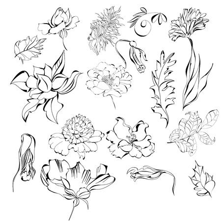Set of flowers Stock Vector - 8640331