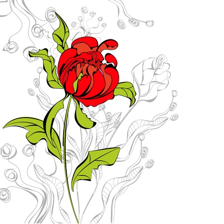 Red peony flower Vector