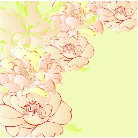 flores vintage: Romantic background Illustration