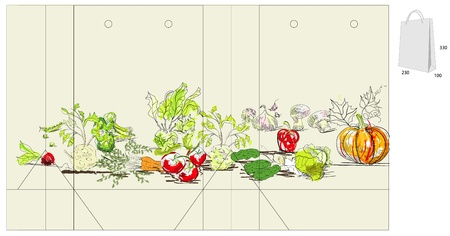 cucumber salad: Template for bag with vegetable Illustration