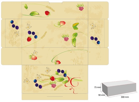Template for box with flowers and berry Vector