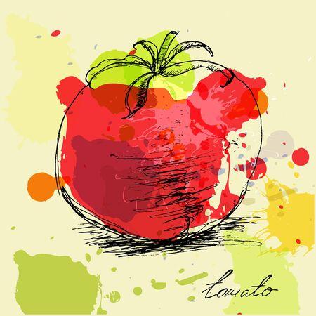 boceto: Ilustración estilizada de tomate
