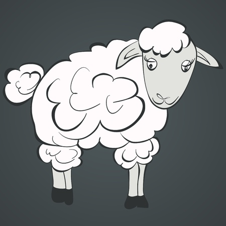 Illustration of sheep  Vector