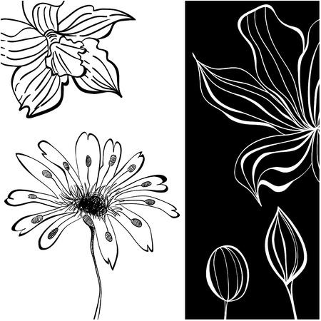 Contrast floral background Vector