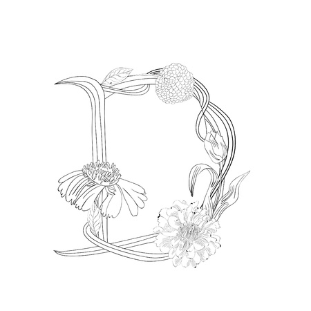 Floral font, Letter D Stock Vector - 10904537