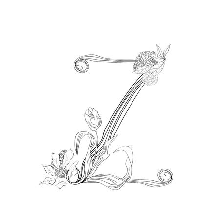 Floral font, Letter Z Stock Vector - 10897341