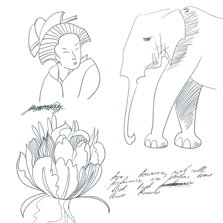Sketch with flower, young woman, Elephant  Vector