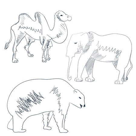 Sketch with animal Vector