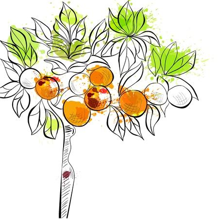 Decorative background with tangerine tree Stock Illustratie