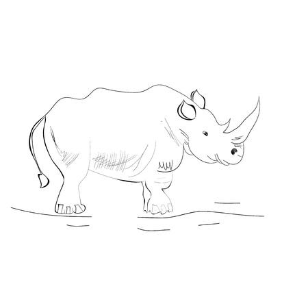 hunted: Rhino