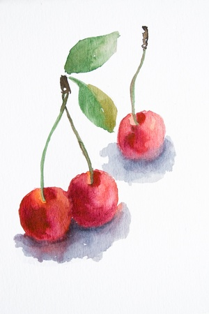 Watercolor cherry  photo