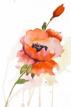 Stylized Poppy flowers illustration for red flowers  illustration