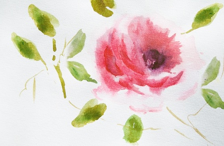 watercolor pen: Rose flower with green leaves