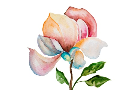 watercolor pen: Beautiful watercolor flowers on white background