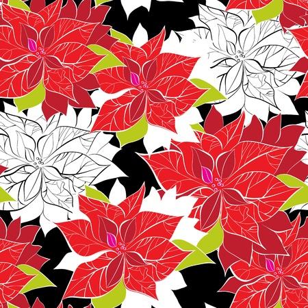 flor de pascua: De fondo sin fisuras con la flor de pascua