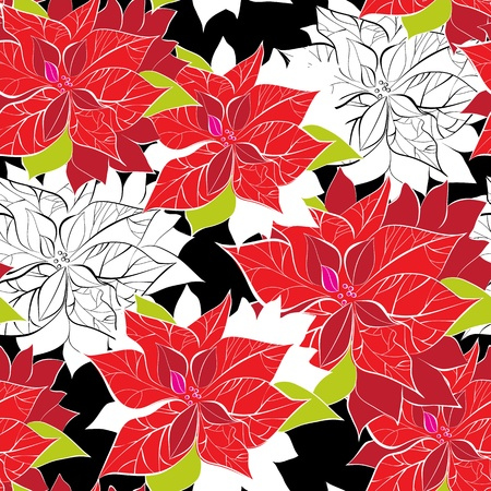 xmas floral: Seamless background with poinsettia