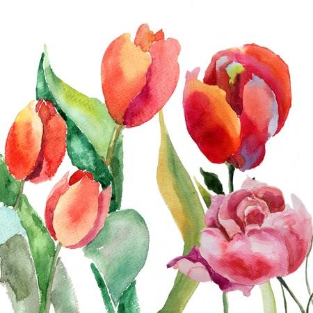 Watercolor illustration of Beautiful summer flowers  illustration