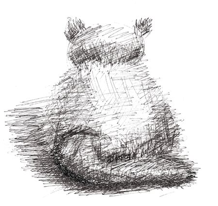 Cat in sketch-style photo