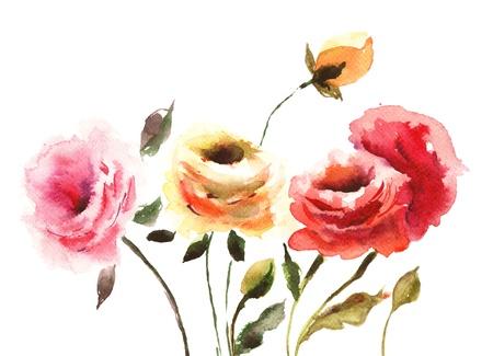 rose bud: Beautiful Roses flowers, Watecolor illustration