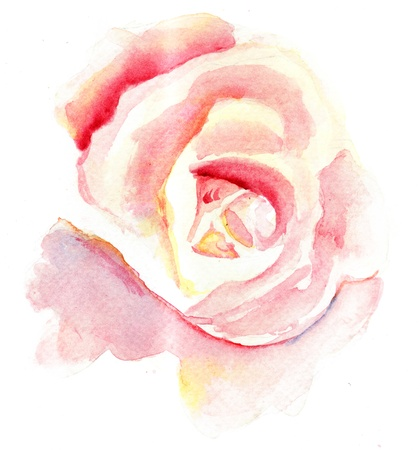 Watercolor illustration of Stylized rose flower illustration