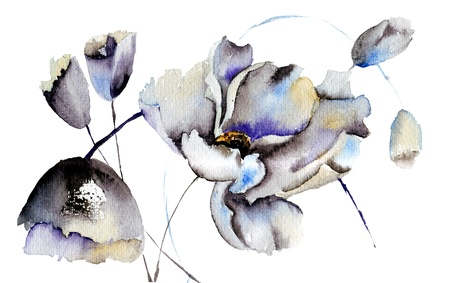 Beautiful flowers, watercolor illustration illustration