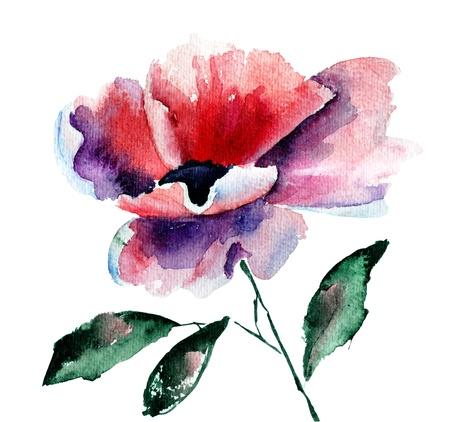 Stylized Poppy flower, watercolor illustration