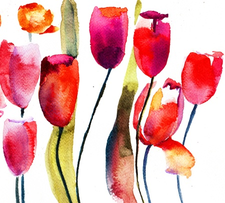 red tulip: Red Tulips flowers