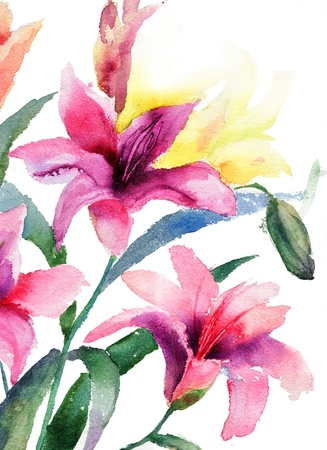 watercolor paper: Beautiful Lily flowers, watercolor illustration